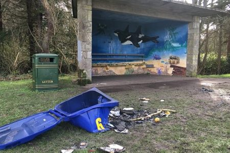 Call for demolition of Cockshaugh Park shelter